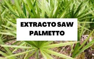 Toda la información sobre el extracto Saw Palmetto
