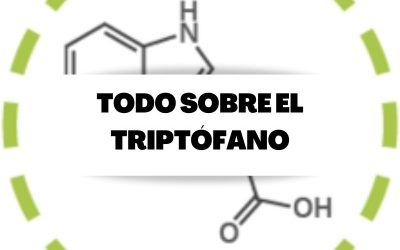 Toda la información necesaria sobre el suplemento de triptófano